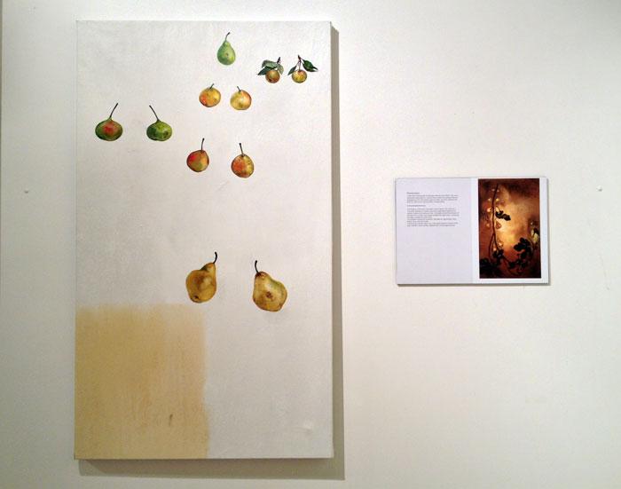 "KAREN YURKOVICH: ""Cultural Biodiversity Projects"""