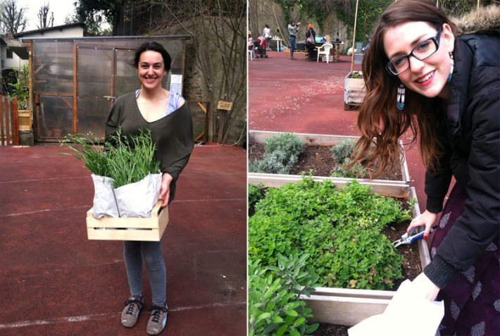 Samantha Hauser and Diana Pemberton in the Community Garden, Florence