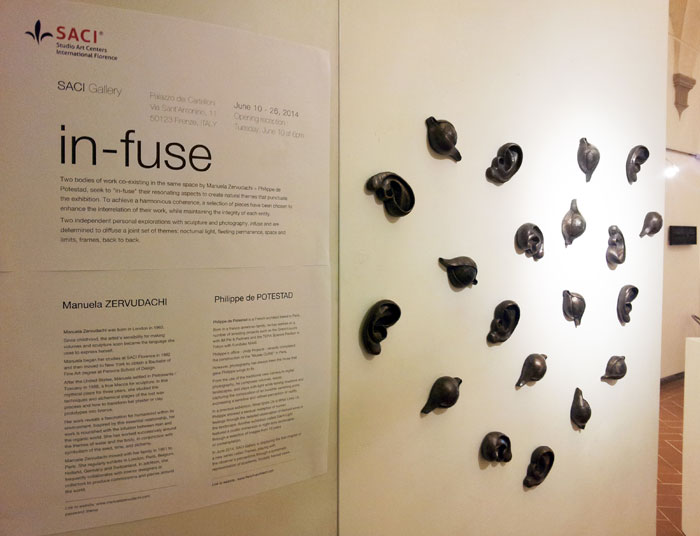 """in-fuse"" in the SACI Gallery, Sculptures by SACI Alumna MANUELA ZERVUDACHI (Spring 1982) and photographs by PHILIPPE DE POTESTAD"