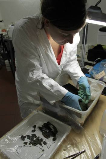 SACI student Clara Wolverton micro-excavating bronze Situla M, which had broken into tiny fragments and was held together only by the mud inside it.
