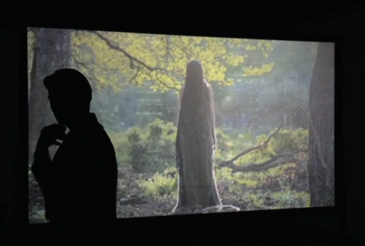 """Ecloga"" (2012) by Anna Rose, video/still image"