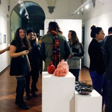 SACI Fall 2014 2D & 3D Student Exhibition