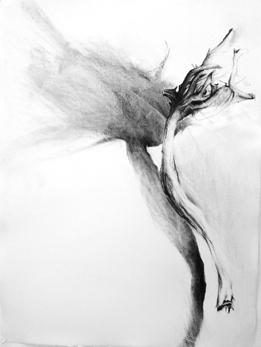 "Keri Rosebraugh, ""Black Kelp,"" 2015, Charcoal, Paint on Paper, 78cm x 100cm"