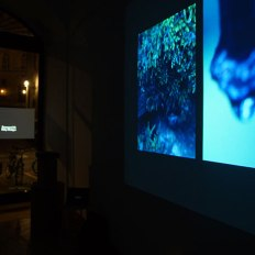 SACI Digital Multimedia exhibition at Cartavetra Gallery, Florence, Spring 2016
