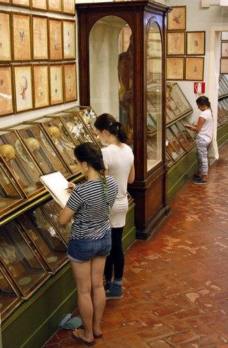 SACI drawing students at La Specola